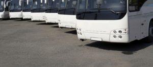 coach hire fleet